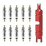 Liadance Kit de Herramientas de removedor de núcleo de Bicicletas Conjunto con reemplazo de latón Presta y núcleo Schrader para el desmontaje de neumáticos de Tubo sin cámara Red 11pcs