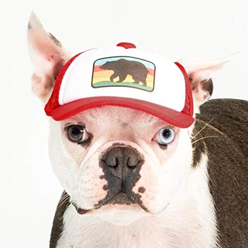 PupLid Trucker Hats for Dogs (Small) (Red, Bear) Stylish Sun Protection Dog Hat for Small Active...