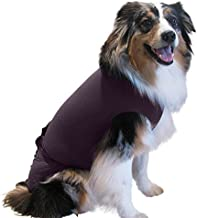 Surgi~Snuggly Dog Cone - E Collar Alternative for Dogs, Made with American Textile to Protect Your Pet's Wounds, The Origi...