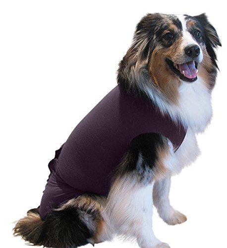 Surgi Snuggly E Collar Alternative with Antimicrobial