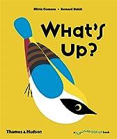 What's Up? (A Flip Flap Pop-Up Book)