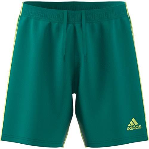 Adidas Tastigo 19 SRT, Pantaloncini Uomo, Verde (Active Green/Hi-RES Yellow), L