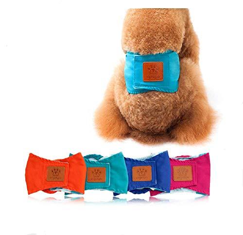 Bingpong Ademend Huisdier Mannelijke Hond Puppy Fysiologische Broek Luier Sanitair Ondergoed Buik Band Wraps Luiers, L, ORANJE
