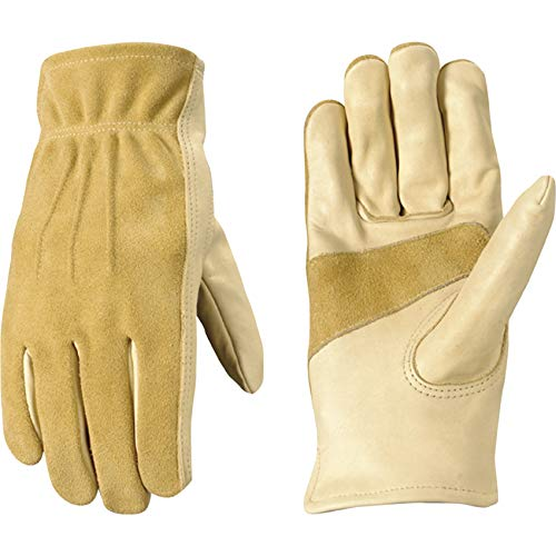 Different Glove Options