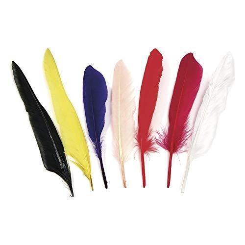 Rayher 8528549 Indianerfedern, 17,5 cm, Beutel 75 Stück, Farben gemischt, natürliche Federn, Schmuckfedern, Bastelfedern, Gänsefedern
