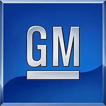 Genuine GM Door Molding 15045281