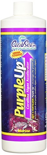 CaribSea Purple Up Algae Accelerator 16Ounce