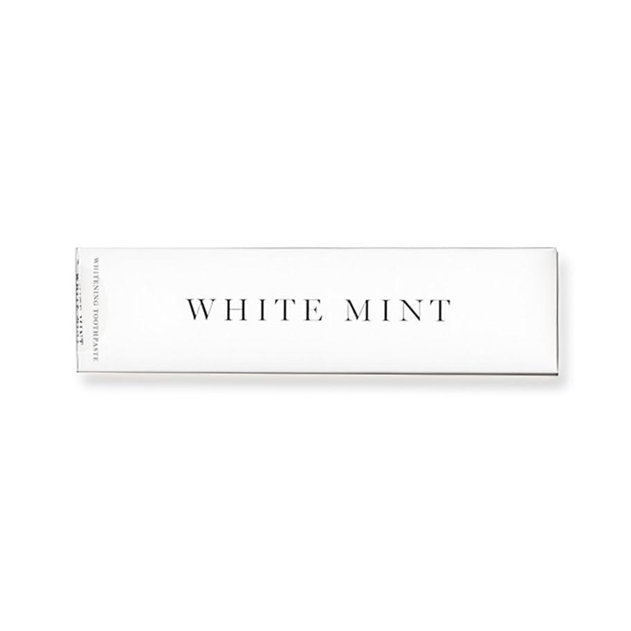 縫い目スラッシュ対称ホワイトミント 130g (旧シルクホワイト)