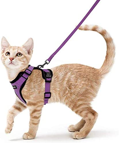 rabbitgoo Cat Harness and Leash for Walking Escape Proof Soft Adjustable Vest Harnesses for product image