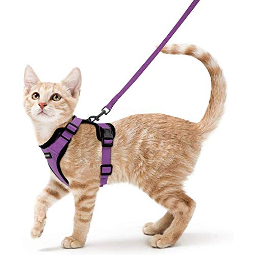 """rabbitgoo Cat Harness and Leash for Walking, Escape Proof Soft Adjustable Vest Harnesses for Cats, Easy Control Breathable Reflective Strips Jacket, Purple, XS(Chest: 13.5""""-16"""")"""