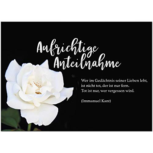 1 x Beileidskarte mit Umschlag/Motiv Aufrichtige Anteilnahme weiße Rose/Beerdigung, Trauer, Sterbefall, Tod/Anteilnahme/Beileid