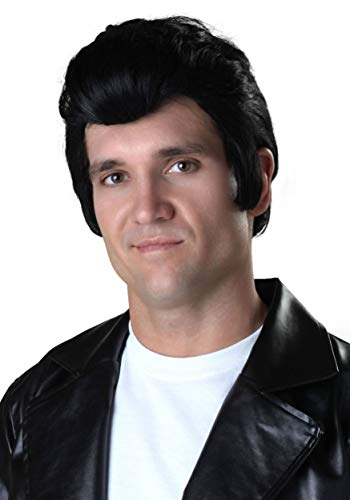 Adult Grease Danny Zuko Wig Danny Wig from Grease Standard