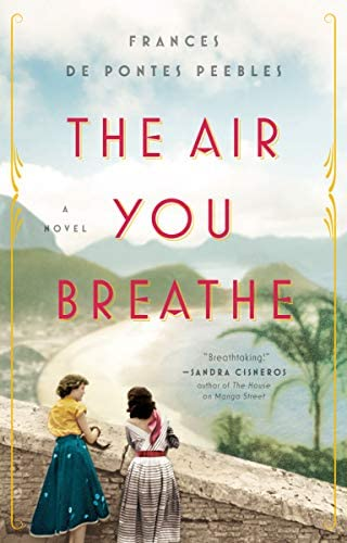 The Air You Breathe A Novel product image
