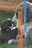 Cómo Lidiar Con Un Perro Perro de Agua Hiperactivo: Qué Hacer Si Tu Perro de Agua Se Orina, Destroza, Muerde, Ladra, Salta, Gruñe o Tira Correa