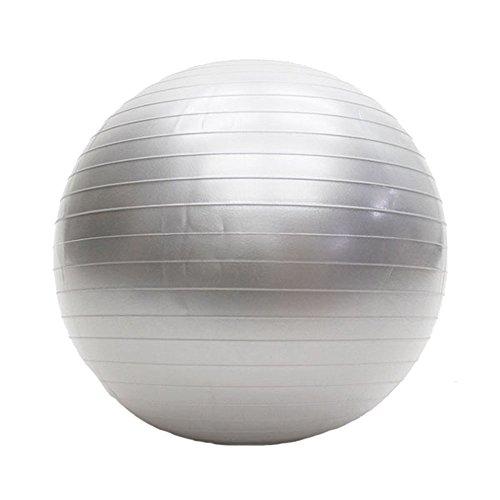 HIRO バランスボール ヨガボール エクササイズボール 55cm ハンドポンプ付