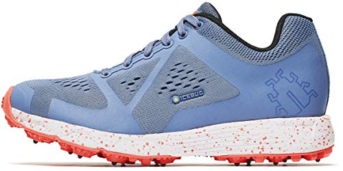 what is the best icebug running shoes 2020