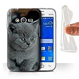 Coque pour Samsung Galaxy Trend 2 Lite/G318 Photos Mignonnes Bébé Animal Chaton Gris Chat Désign Transparent Doux Silicone...