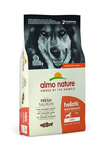 almo nature Holistic Maintenance Large con Salmone Fresco - crocchette Premium per Cani Adulti con Pesce Fresco - specifico per Cani di Taglia Large - No OGM - Sacco 12kg