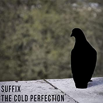 The Cold Perfection