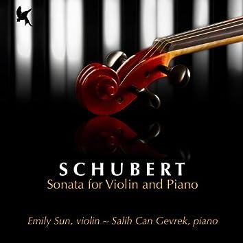 Schubert: Sonata for Violin and Piano in G Minor, D. 408