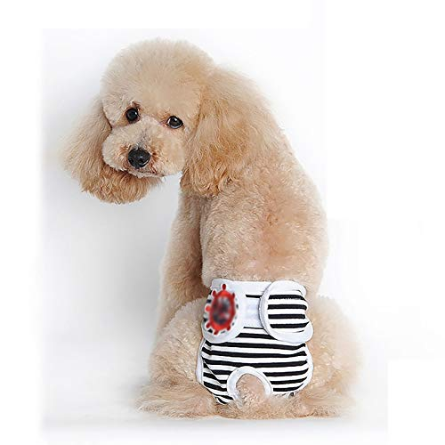 Pañales para Perros pequeños Femeninos, Pantalones fisiológicos Reutilizables y Lavables para Perros, Pantalones menstruales Transpirables y cómodos (Color : Red, Size : Large)
