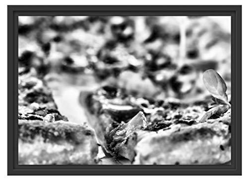 Pizza versgebakken in schaduwvoeg fotolijst | kunstdruk op hoogwaardig galeriekarton | hoogwaardige afbeelding op canvas 55x40