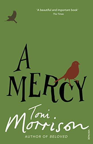 A Mercy Kindle Edition By Morrison Toni Literature Fiction Kindle Ebooks Amazon Com