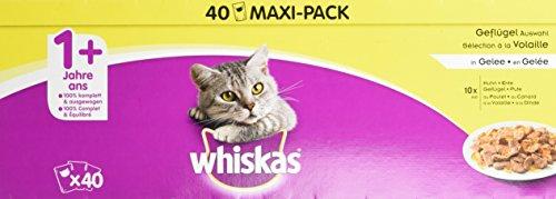 Whiskas 1 + cibo per gatti – selezione di pollame in gelatina, cibo umido di alta qualità per gatti adulti – 40 sacchetti per porzioni da 100 g