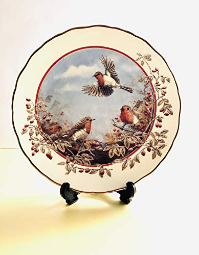 Royal Doulton Deko Teller – Ein Delight von Robins von Mark Chester in die Jahreszeiten der Hedgerow Collection – Bradex 26-r62–103,4