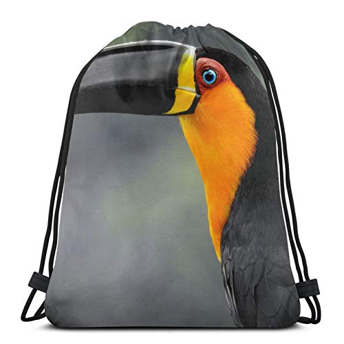 Affordable shop Toucan Ariel Toucan Bird Beak Profile Portrait Background Drawstring Backpack Bag Lightweight Gym Travel Yoga Casual Snackpack Shoulder bag for Hiking Swimming beach