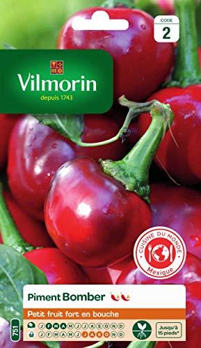 Vilmorin -Piment Bomber - Petit fruit fort en bouche -moyennement piquants - Note de 5/10 sur l'échelle de Scoville -adapté à la culture en pot ou carré potager