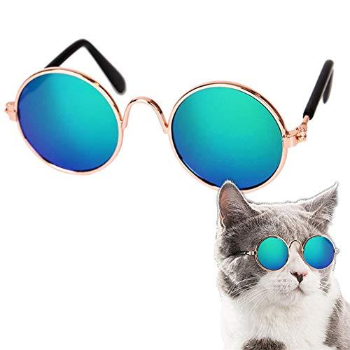 PLUS PO Hundesonnenbrille Hundebrille Für Kleine Hunde Hundebrille Augenschutz Faltbare Hundesonnenbrille Welpen Sonnenbrille Schutzbrille Augenschutzbrille Green