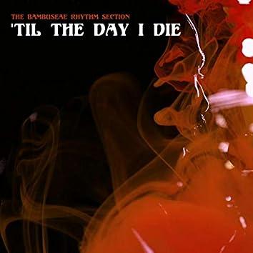 'Til the Day I Die