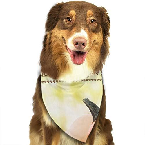N/B gelukkige Thanksgiving pompoenen op rustieke houten planken aangepaste hond hoofddoek felgekleurde sjaals schattige driehoek slabbetjes accessoires voor huisdier honden