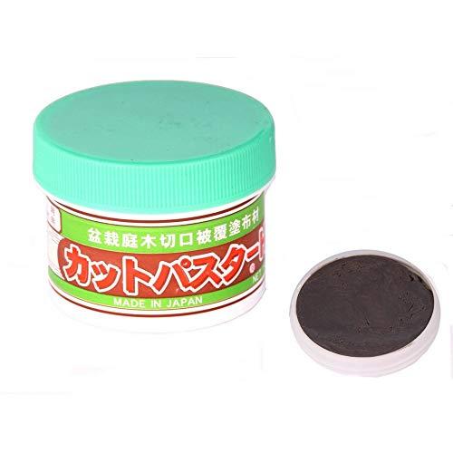 Japan Bonsai - Wundpaste Nadelbäume 160 gr. 61045