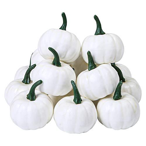 Elcoho Mini-Kürbisse für Zuhause, Garten, Erntedankfest, Halloween-Dekoration, 16 Stück weiß