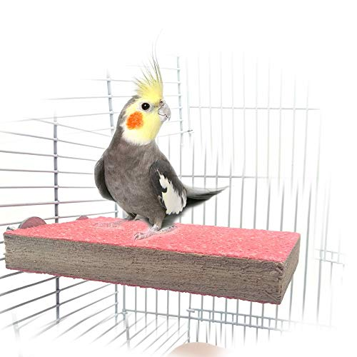 Colorful Bird Perch Stand Platform Natural Wood Playground...