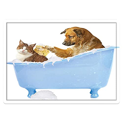 Alfombra de baño Antideslizante 50X80cm,Amante de los Animales Gato, Perro y Gatito Junto con champú de Burbujas divirtiéndose con estampAlfombrilla Lavable a máquina con absorción de Agua Blanda