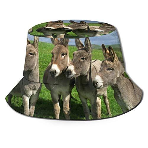Gorras Pequeño Burro Meadows Sombrero de Pescador Moda Unisex Sombrero de Cubo Gorra de Pescador Verano Pesca al Aire Libre Camping