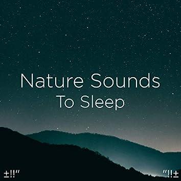"±!!"" Nature Sounds To Sleep ""!!±"