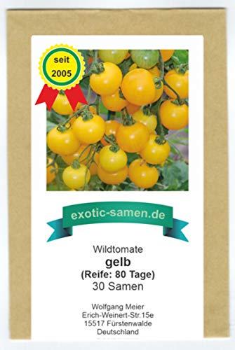 Gelbe Wildtomate - krankheitsresistent - auch für die Kübelpflanzung - 30 Samen