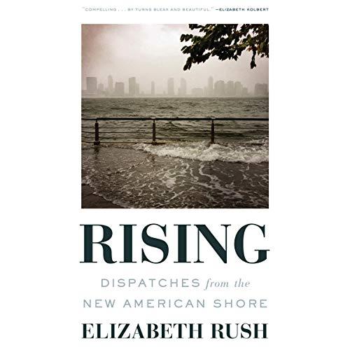 Rising audiobook cover art