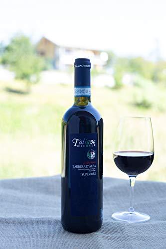 Vino Rosso Azienda Agricola Taliano Michele Bottiglia da 0,75 lt (Barbera D'Alba DOC)