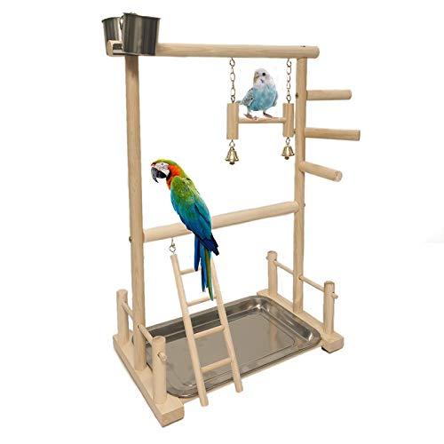 Papagei Spielplatz Vogelspielplatz Nymphensittich Spielplatz Holz Barsch Turnhalle Laufgitter Leiter mit Doppelter Vogelrahme Feeder Cups Spielzeug Übungsspiel