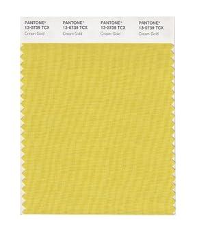 PANTONE Smart 13-0739X Color Swatch Card Cream Gold