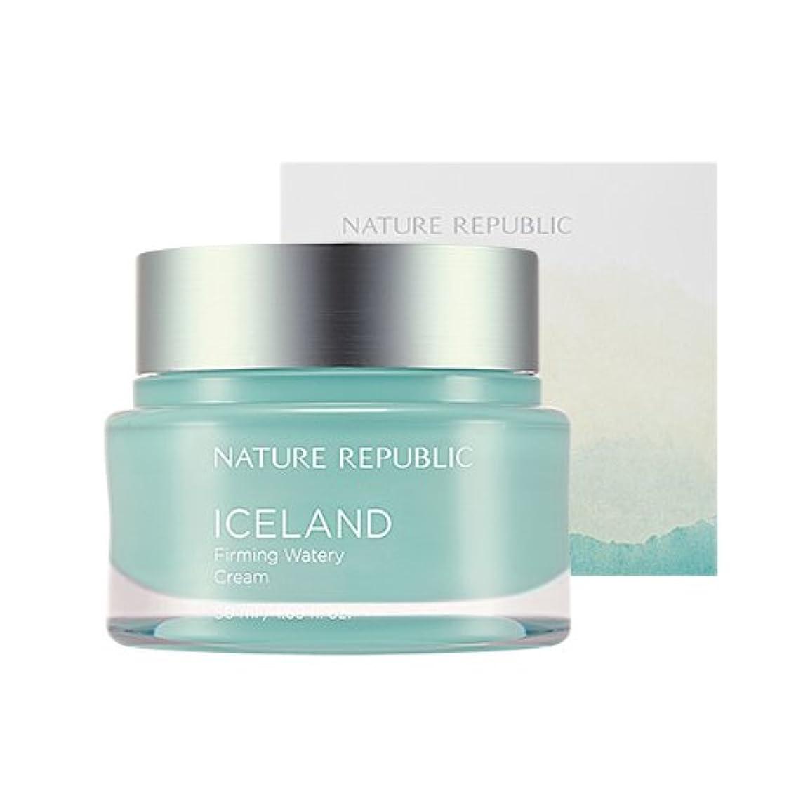 充電サポート加入Nature Republic Iceland Firming Watery Cream 50ml / ネイチャーリパブリック アイスファーミング水分クリーム 50ml [並行輸入品]
