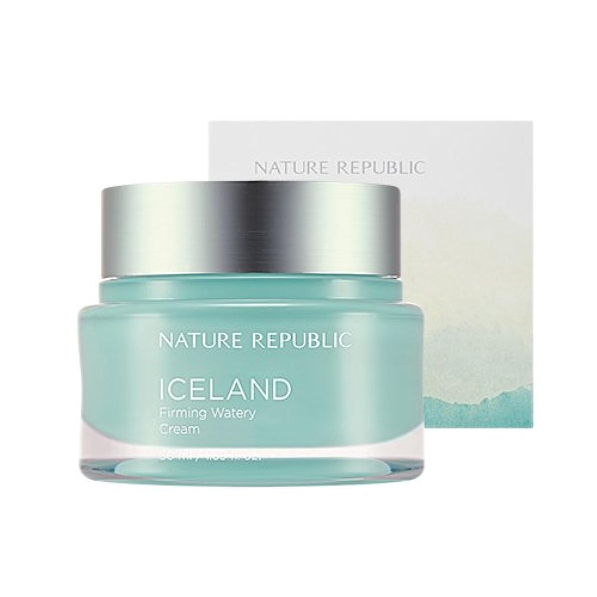 不適切な櫛助けてNature Republic Iceland Firming Watery Cream 50ml / ネイチャーリパブリック アイスファーミング水分クリーム 50ml [並行輸入品]