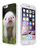 Pig Case for iPhone 6S,Gifun Anti-Slide and Drop Protection Soft TPU Premium Protective Case for iPhone 6 & 6S - Lovely Little Pig