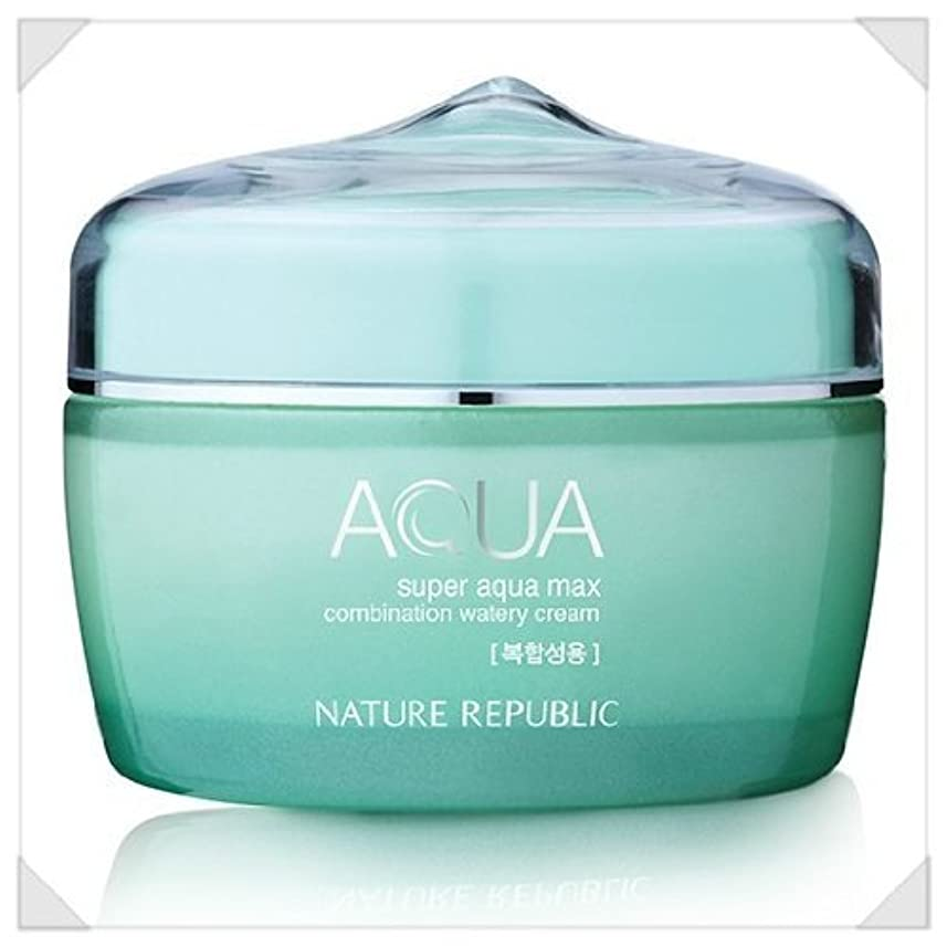 ちなみに家禽発症Nature Republic Super Aqua Max Combination Watery Cream_80ml_for combination skin type