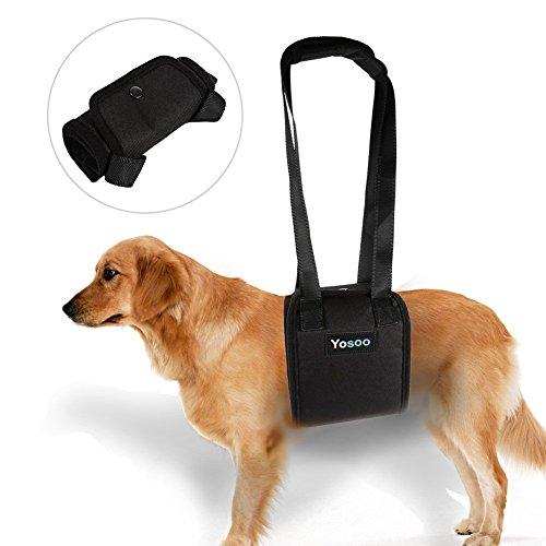 Tragbare Hundegeschirr Unterstützung Hilft dem Hund mit schwachen Vorder oder Hinterbeinen aufstehen gehen ins Auto steigen Treppen deaktivieren Wunden, älteres Haustier